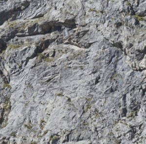 Rock texture for model