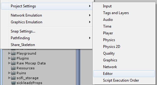 Project Settings for Editor
