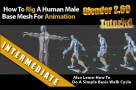 Rig Human Male Basemesh with Blender