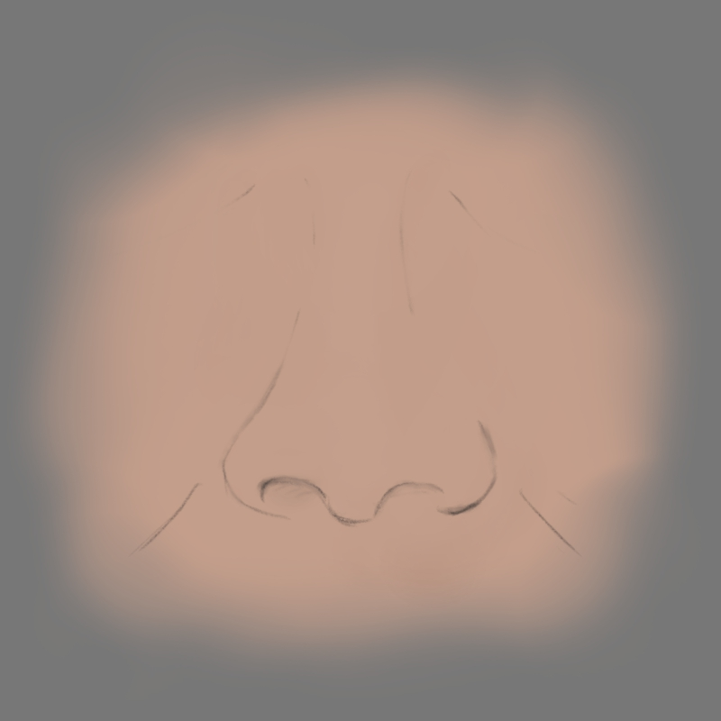 Nose with basecolor