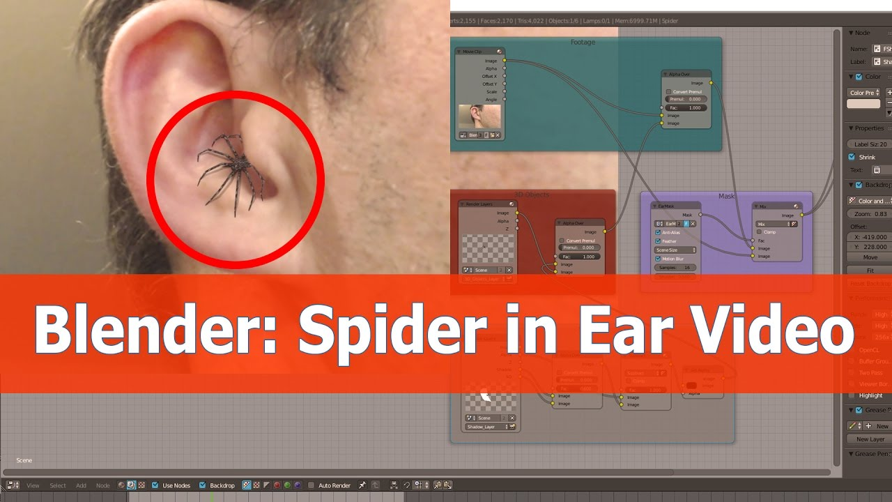 Spider inside ear video with Blender
